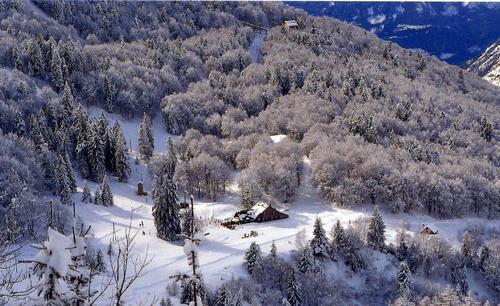 Le plateau du Lienz