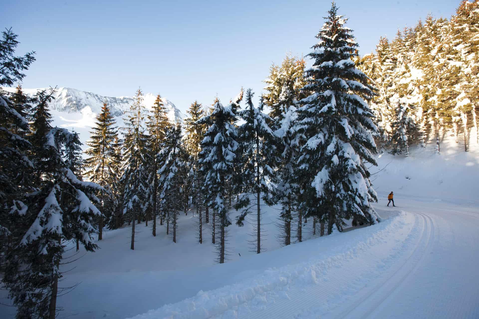 Val d'Azun, votre espace nordique